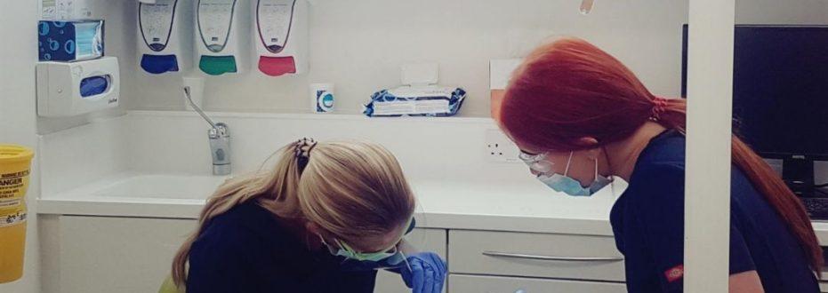 trainee dental nurses